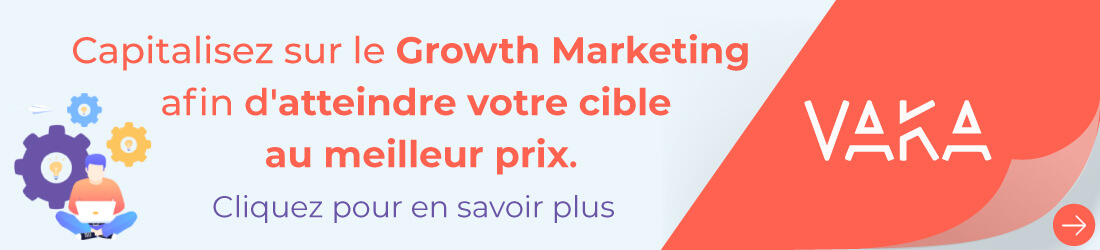 VAKA Agence growth marketing matrice AARRR